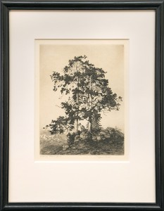 george elbert burr etching ragged pines colorado desert set