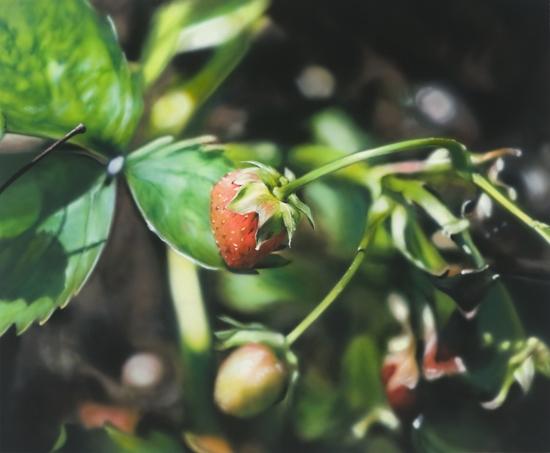 ben-schonzeit-one-strawberry-painting