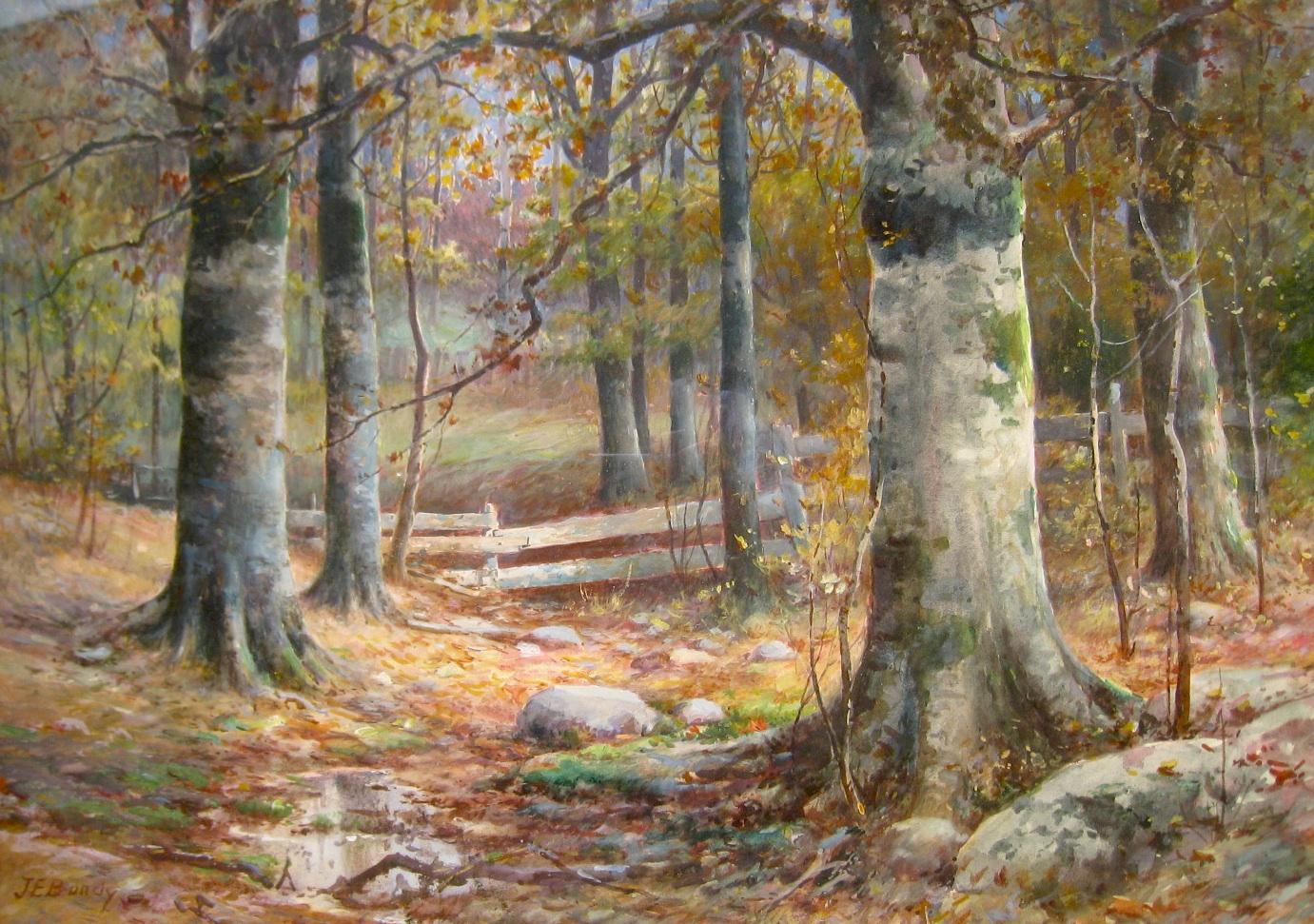 bundy-autumnbeechesfence-cropped