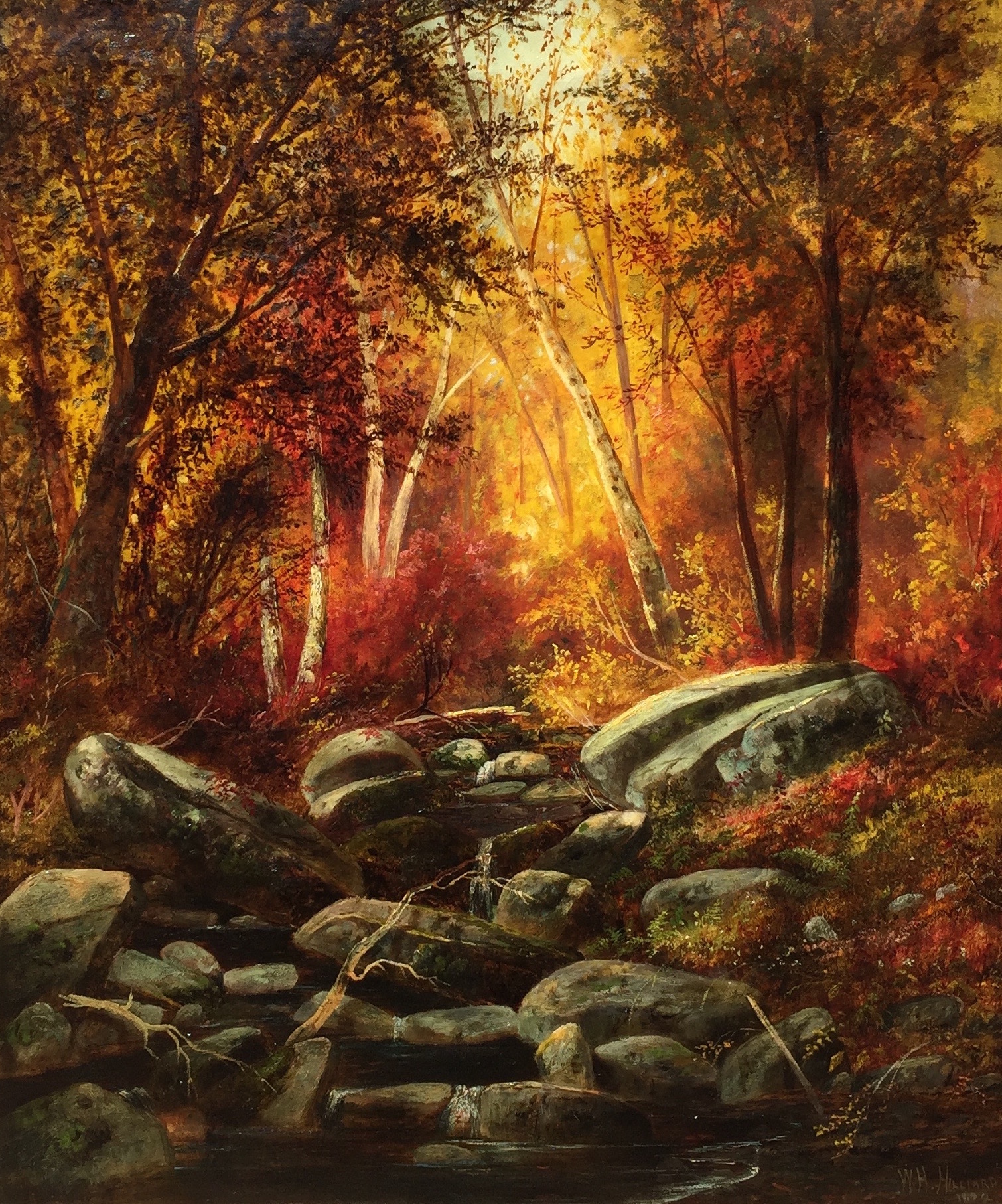 hilliard-autumncolors-cropped