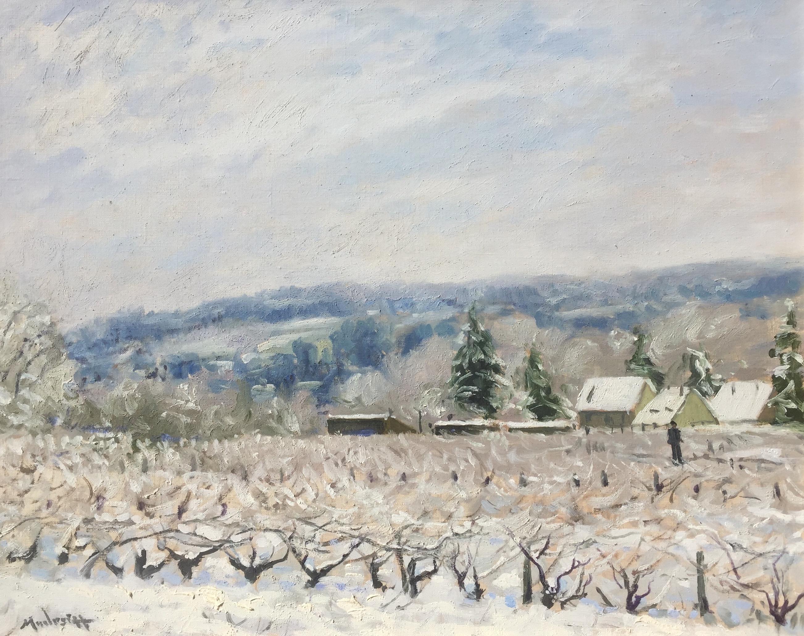 modesitt-wintervineyard-cropped
