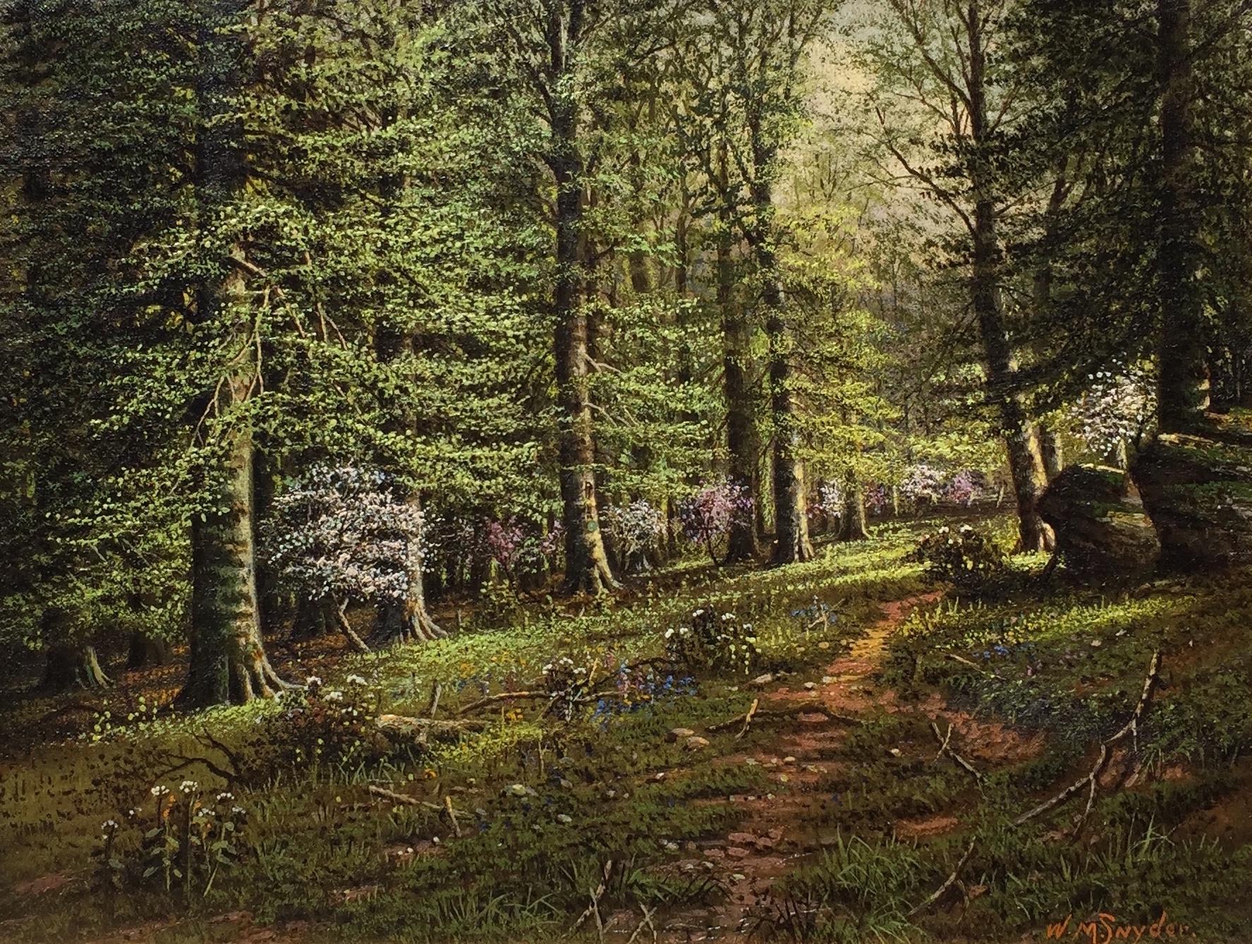 snyder-springinthebeechwoods-cropped