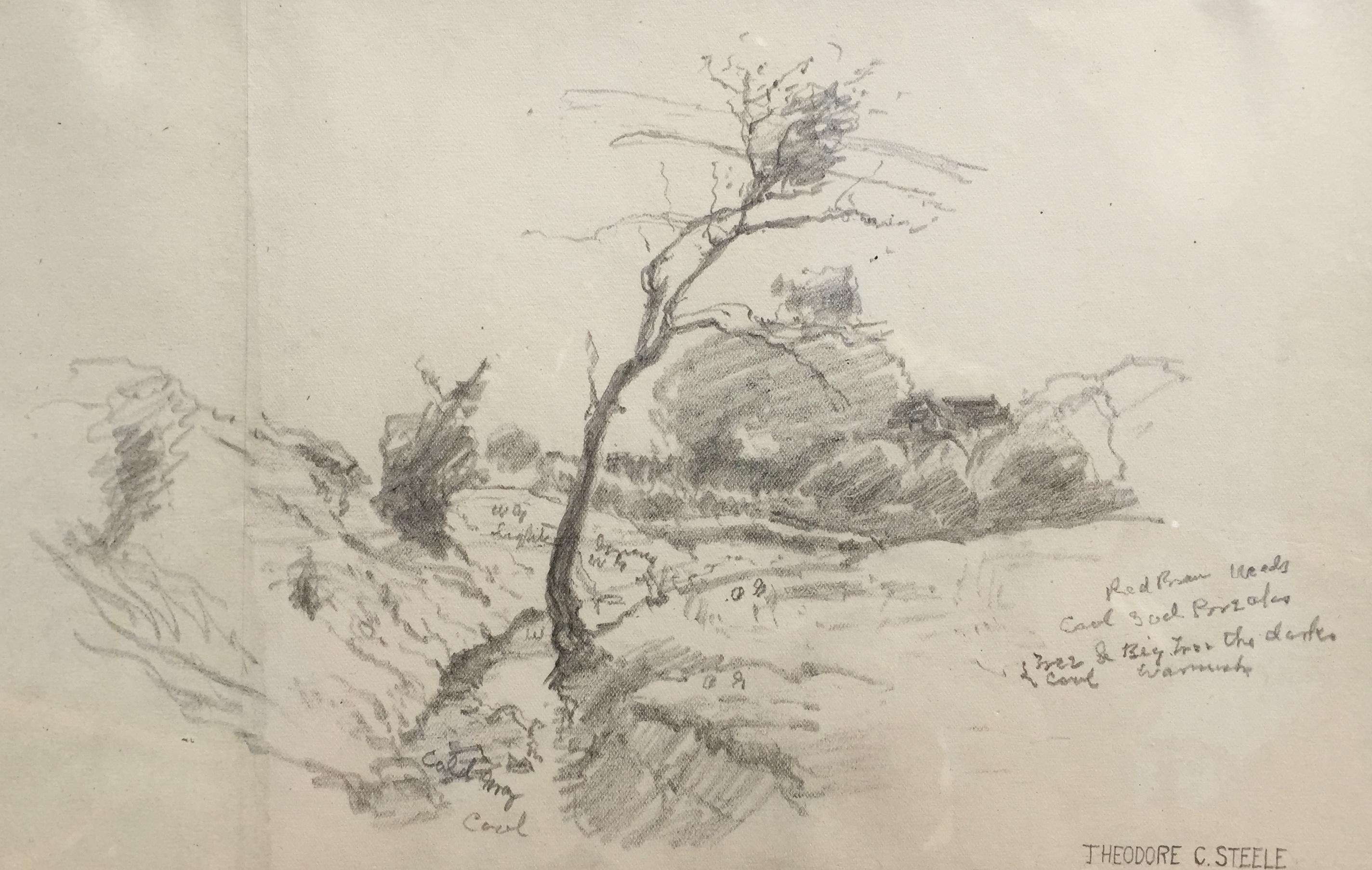 steele-landscapesketch-cropped