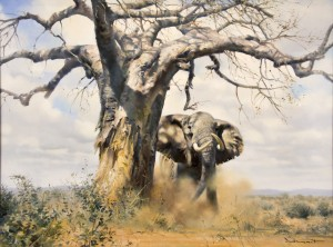 GRANT - ELEPHANT TREE - FULL
