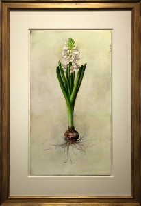 RIPPLE-White Hyacinth-2005-f-36x24