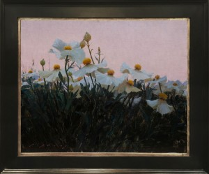 LIPKING-matilija-poppies-16x20