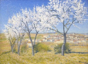 Lauge-Flowering_Almond_Trees300