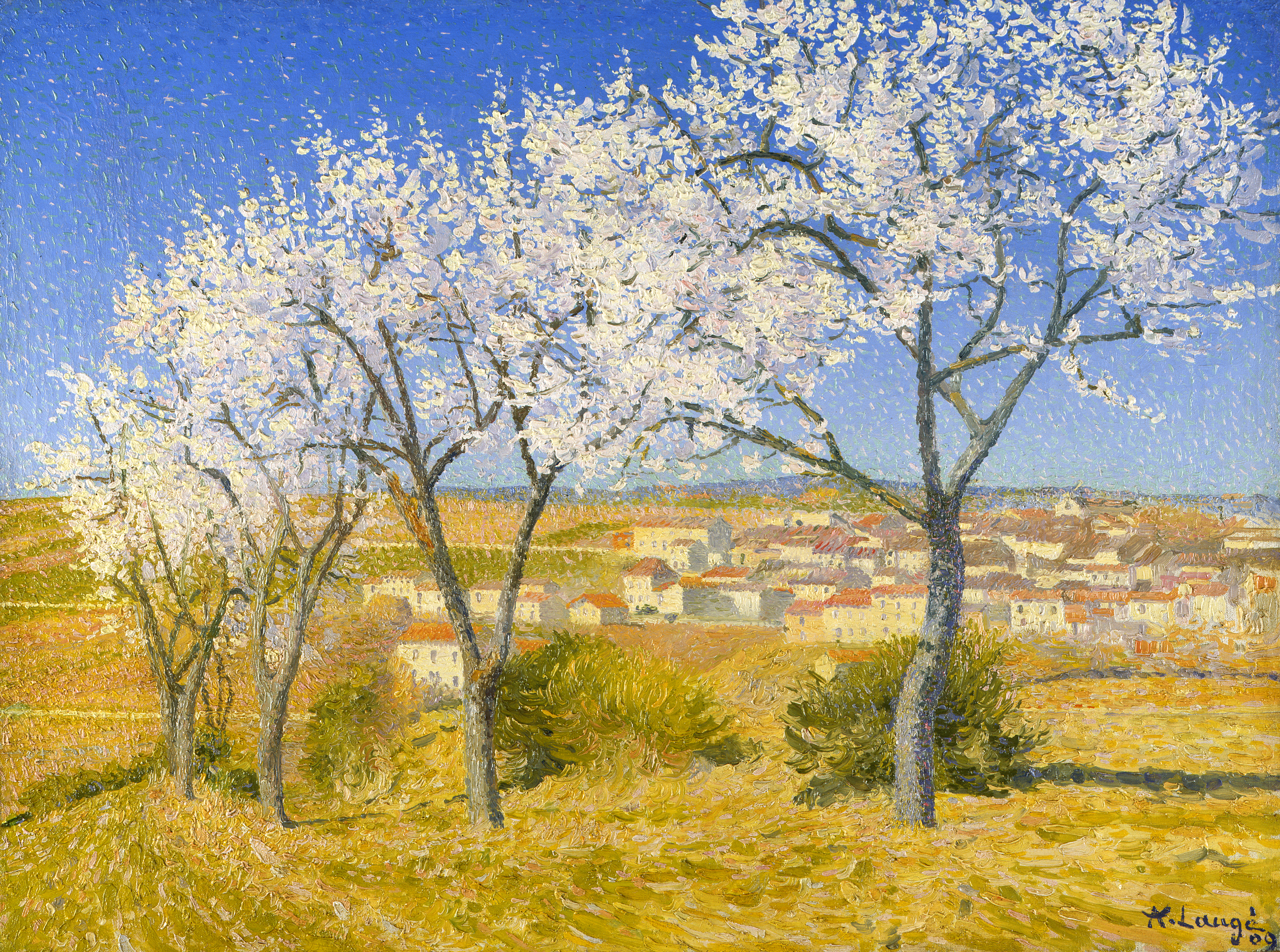 Lauge-Flowering_almond_trees_Cailhau300