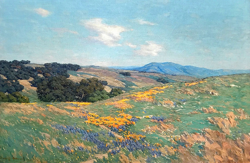 Redmond - Poppies and Lupine 20x30 7979 Frameless Large