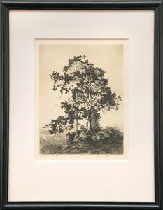 george elbert burr etching ragged pines colorado desert set