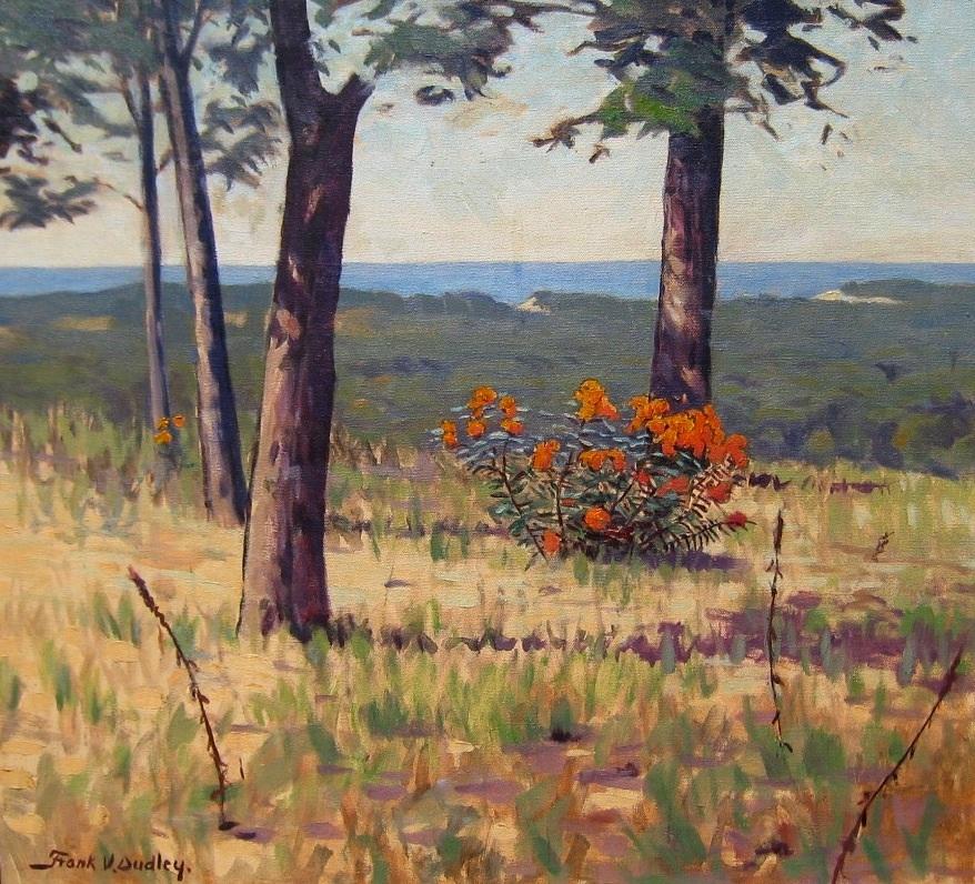 dudley-acrossaduneforest-cropped