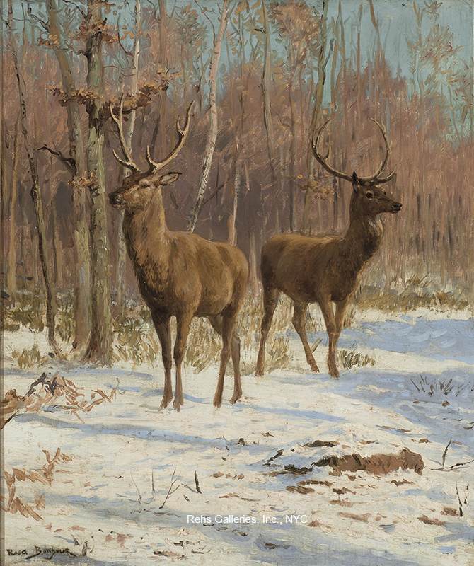 Stags in a Winter Landscape