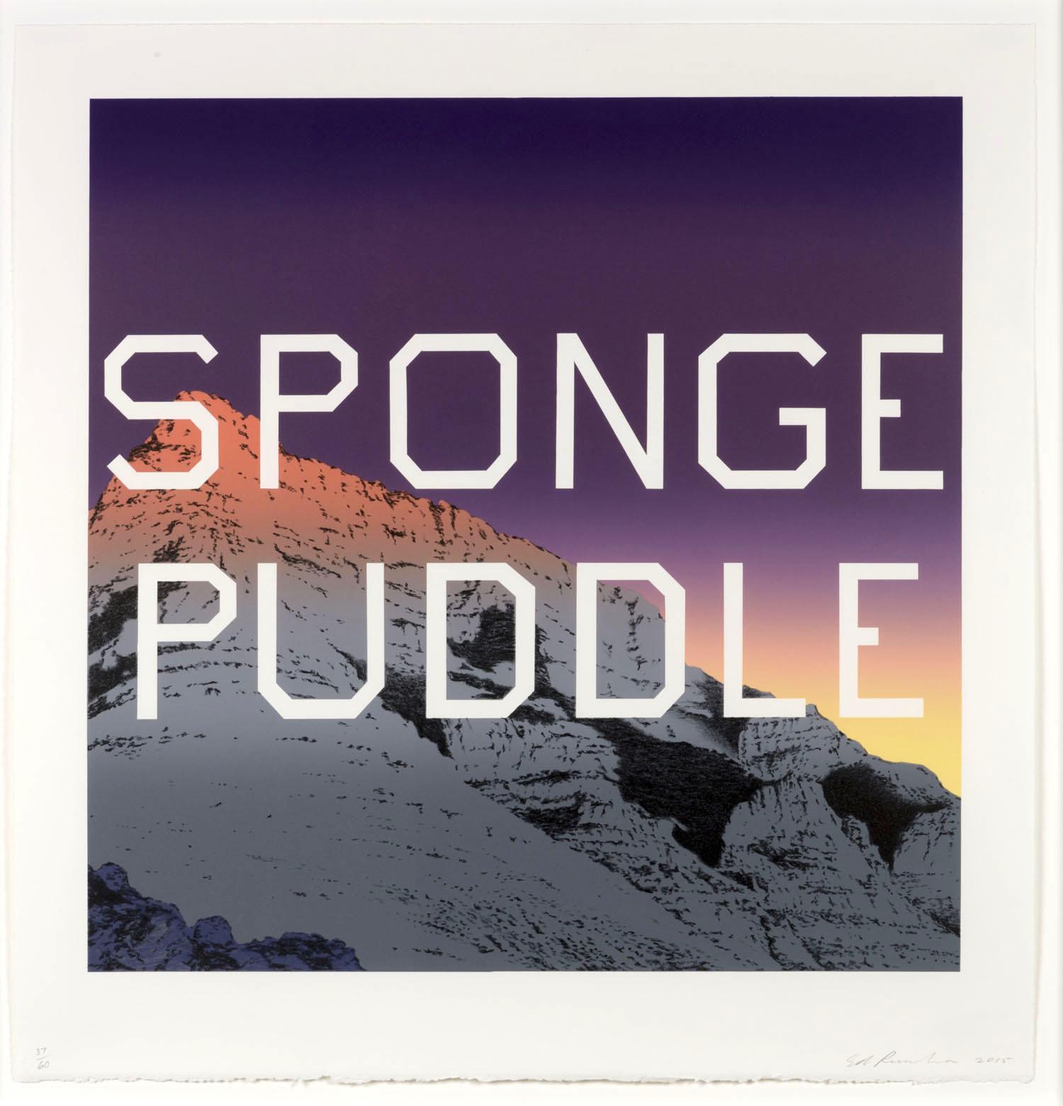 alt Sponge Puddle, 2015