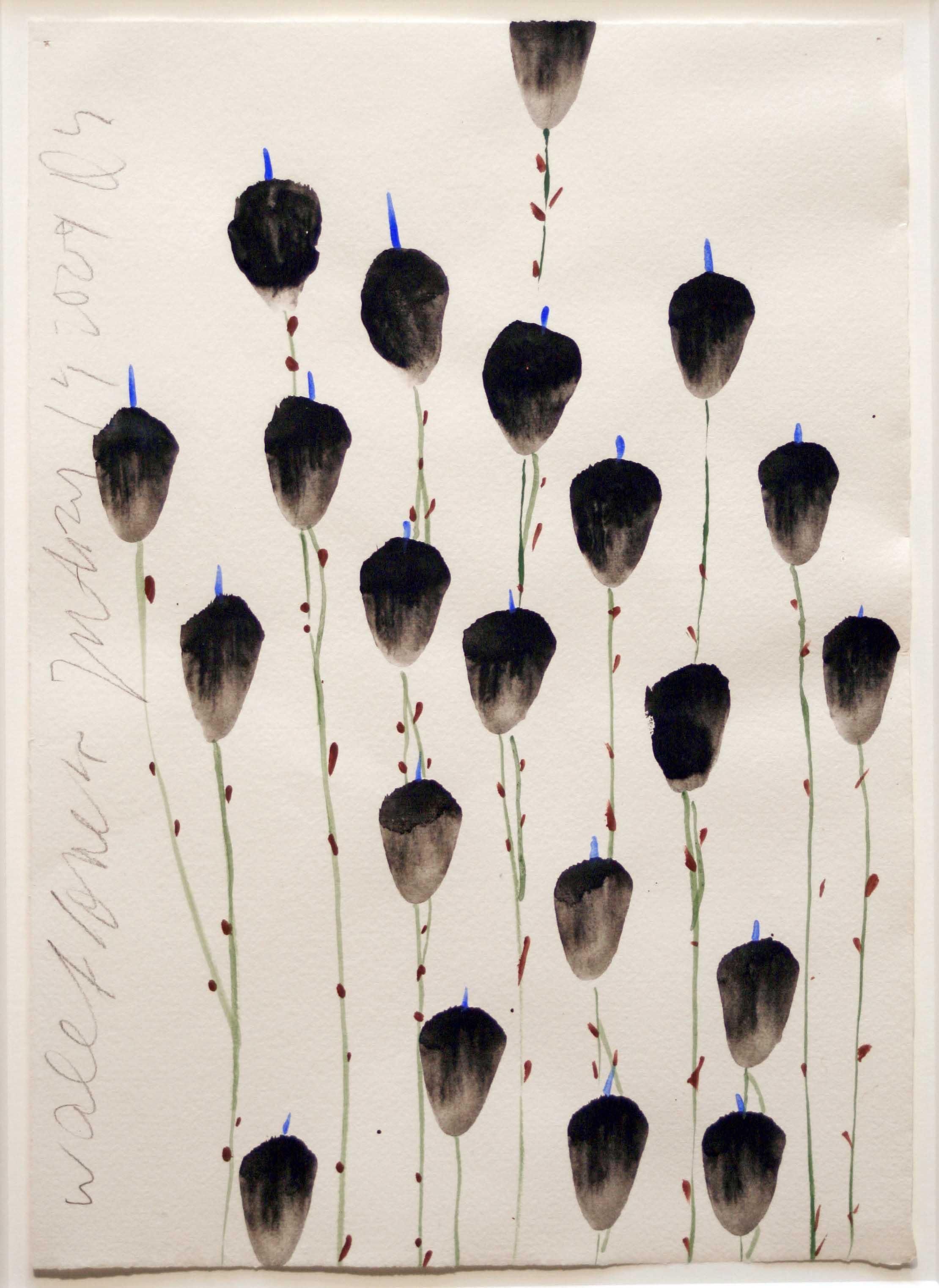 alt Wallflowers Jan 14 2009