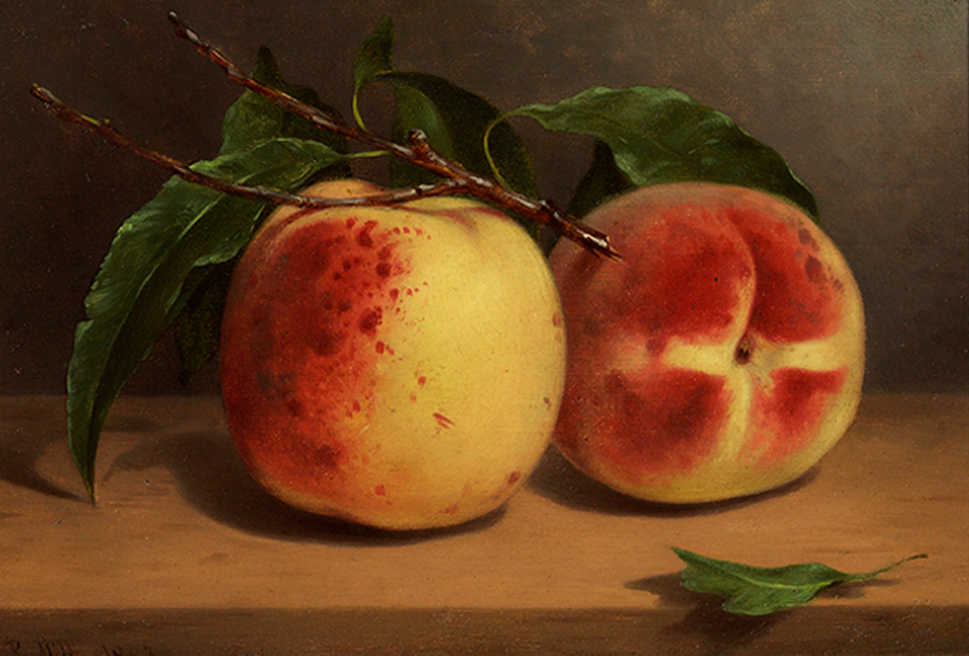 Study of Peaches from Nature, 1863