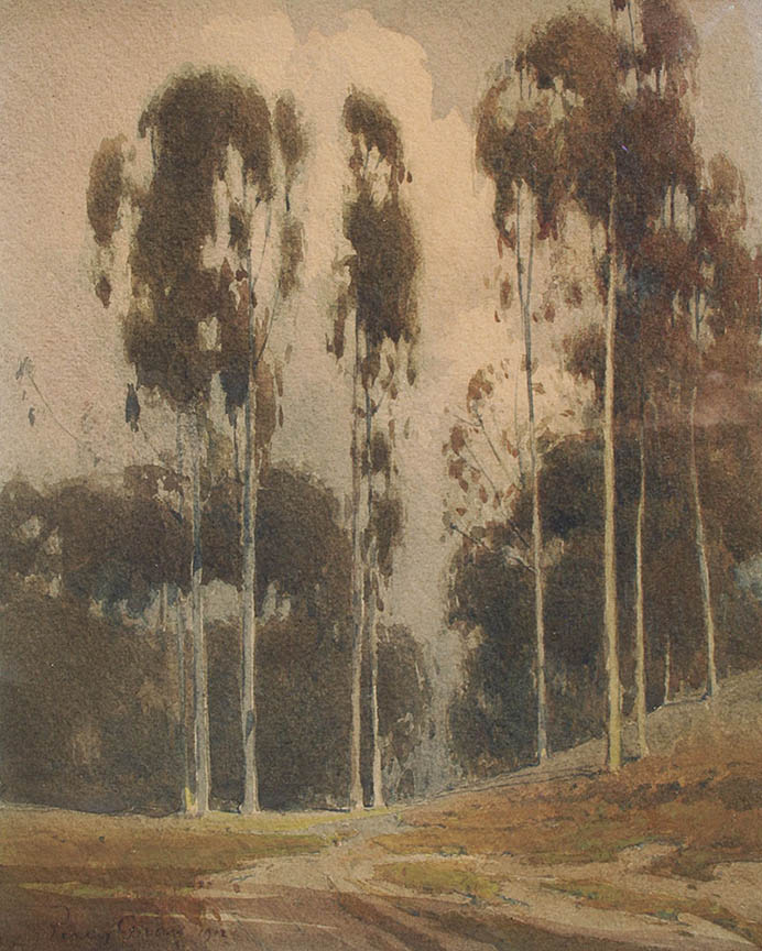 Northern California Landscape with Eucalypti
