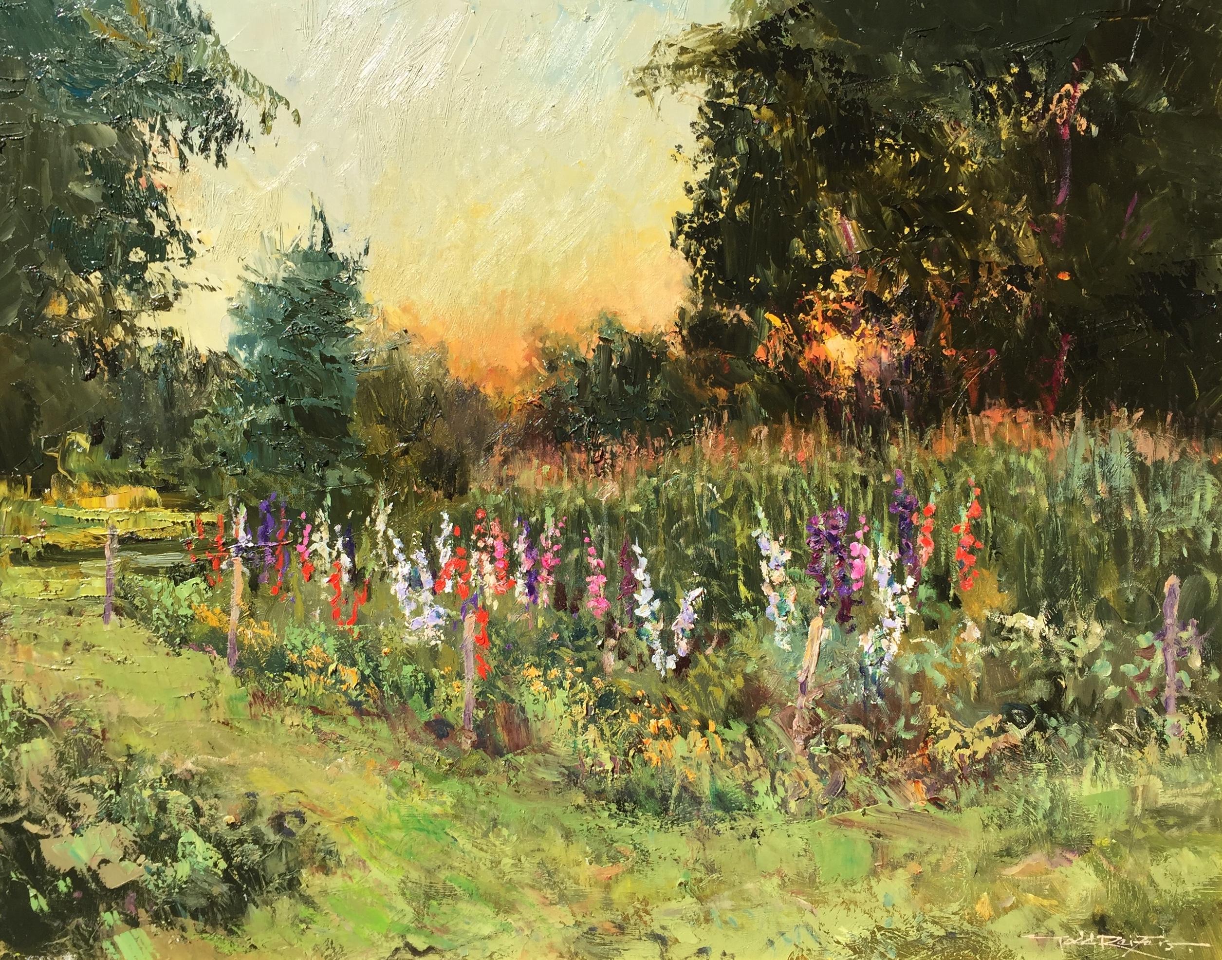 Gladiola Garden, Evening Light