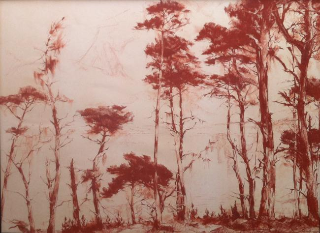 """""""Pines of Point Lobos"""""""