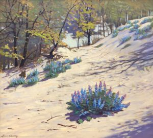 Dudley-May-Time and Lupine-cropped