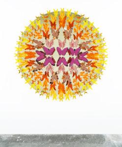 Gabriela-Noelle-Butterfly-Radial-New-1