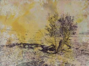 Jennifer_Basile_1000_Acres_Broken_Tree_FULL