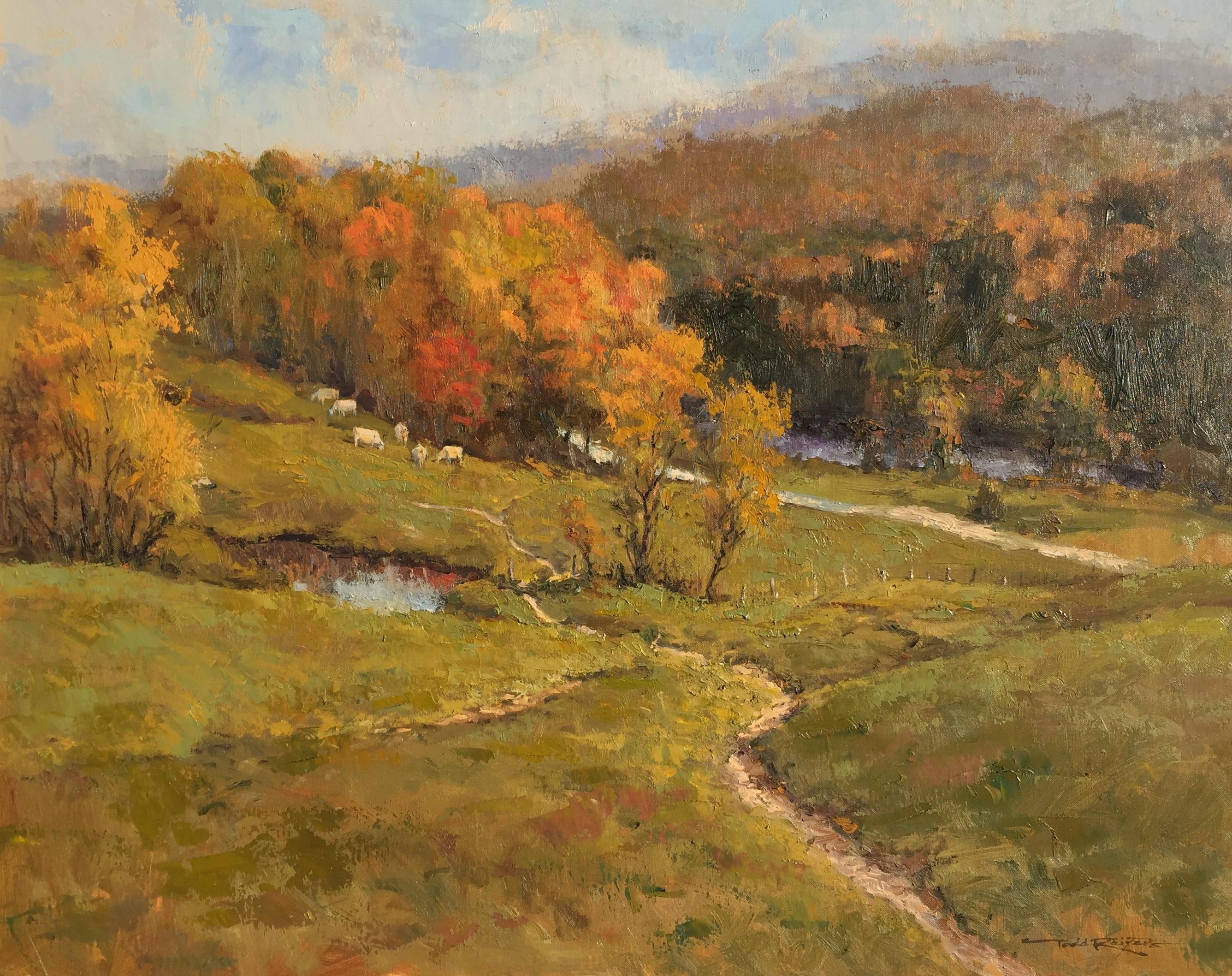 Pasture Land Near Cambridge, Vermont