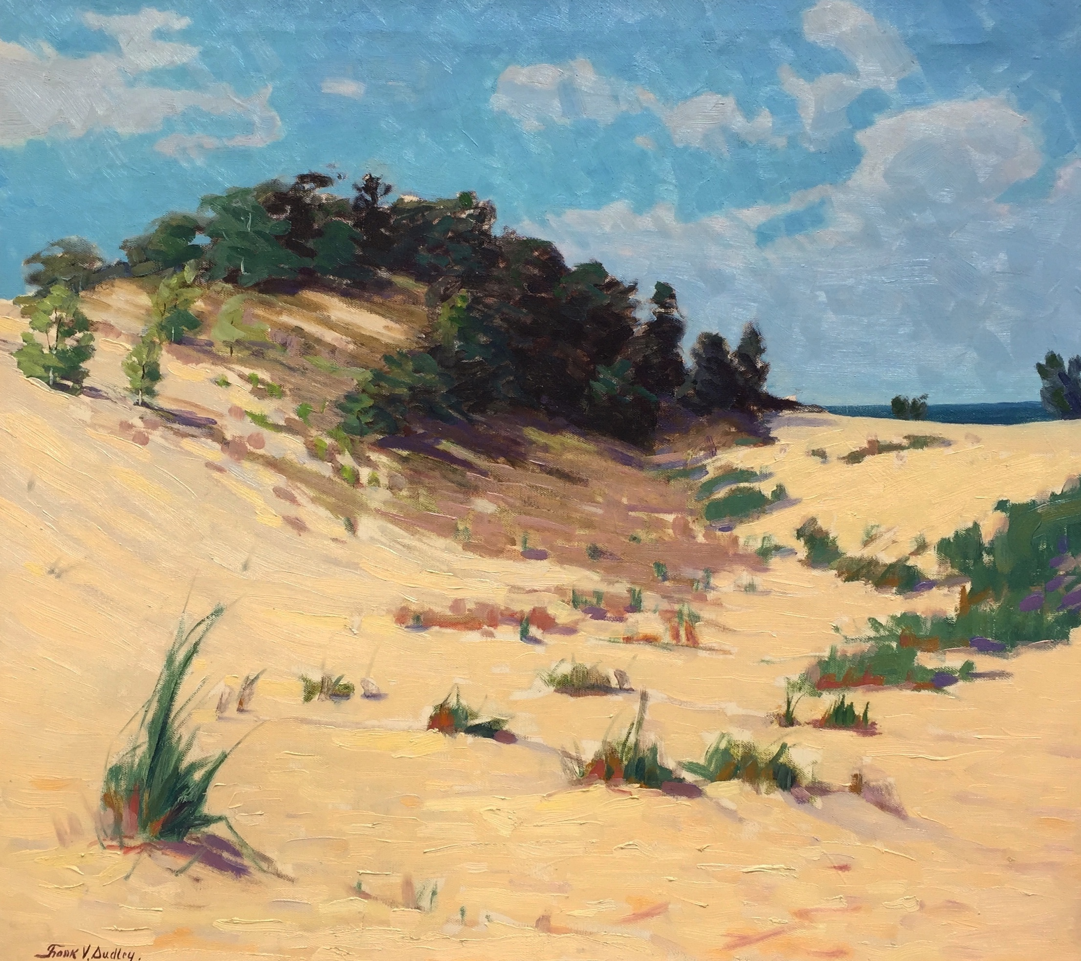 The Windy Dune Crest