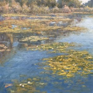 Doloresco-Water Lilies-cropped