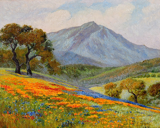 Bull Poppies and Oaks