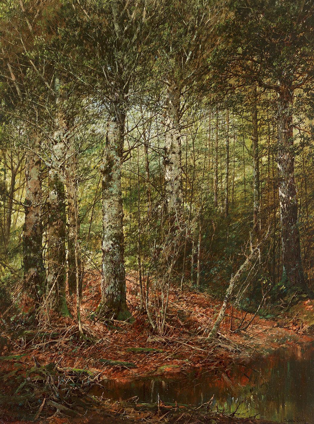 Sonntag, W-Forest Interior