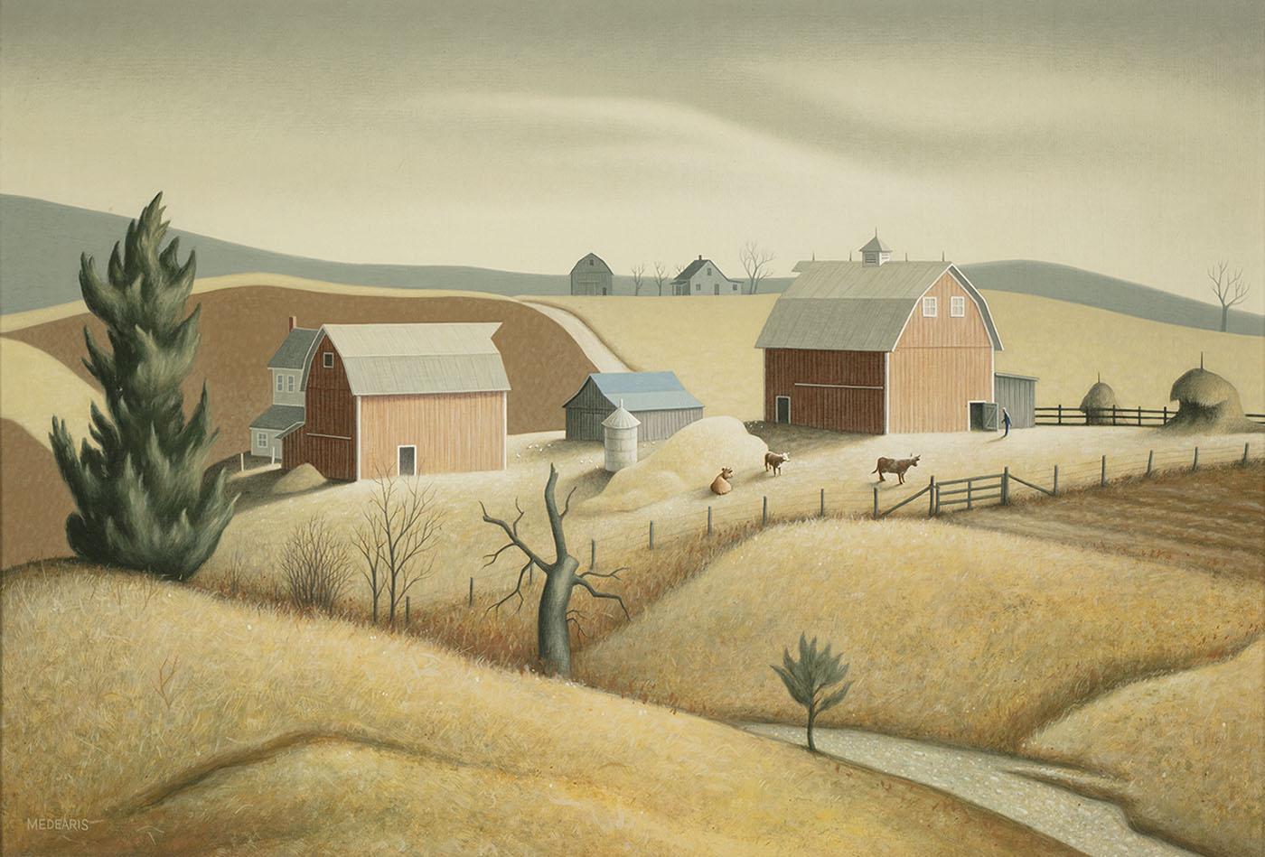 Medearis Missouri Farm